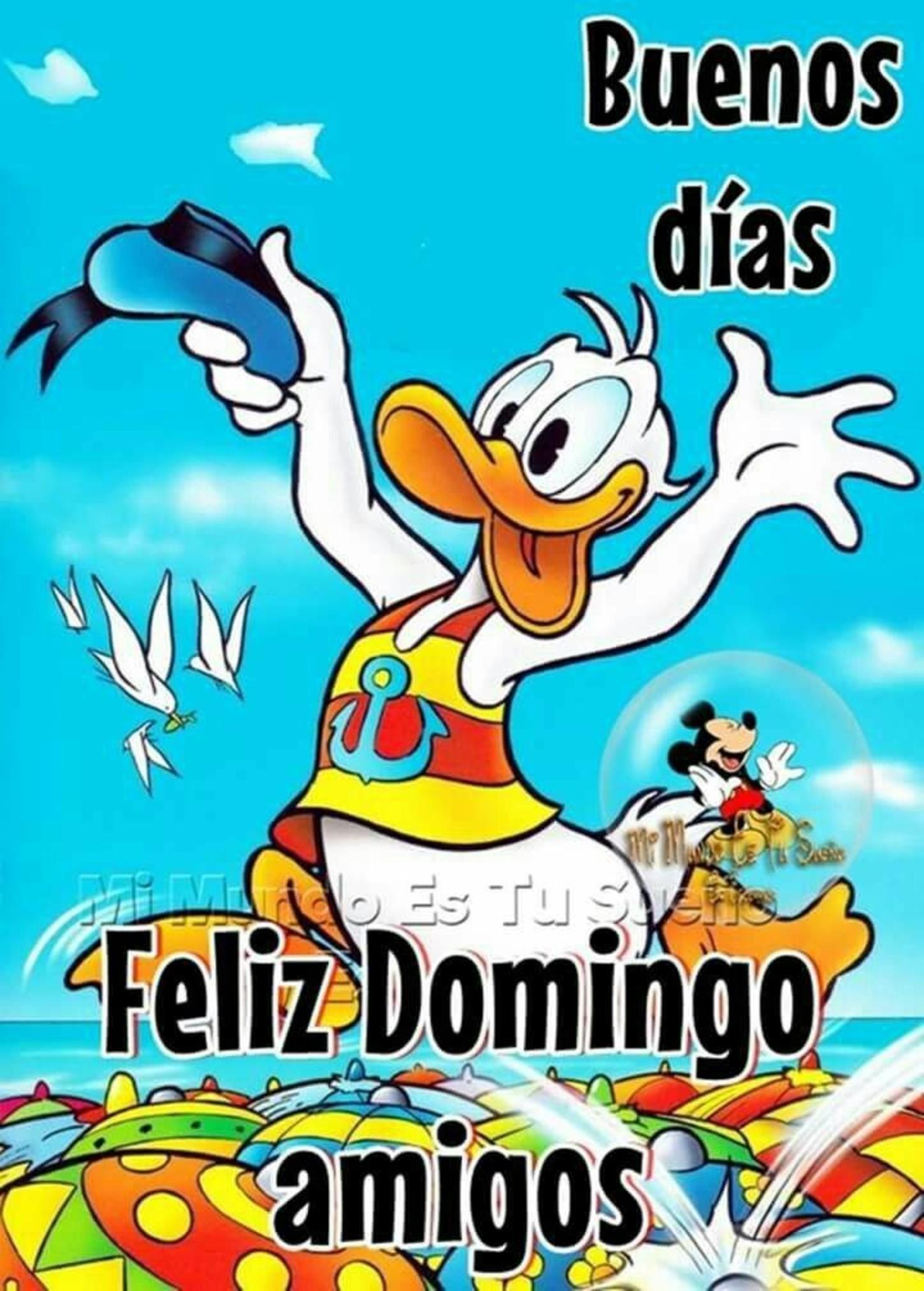 Feliz Domingo Pinterest 317