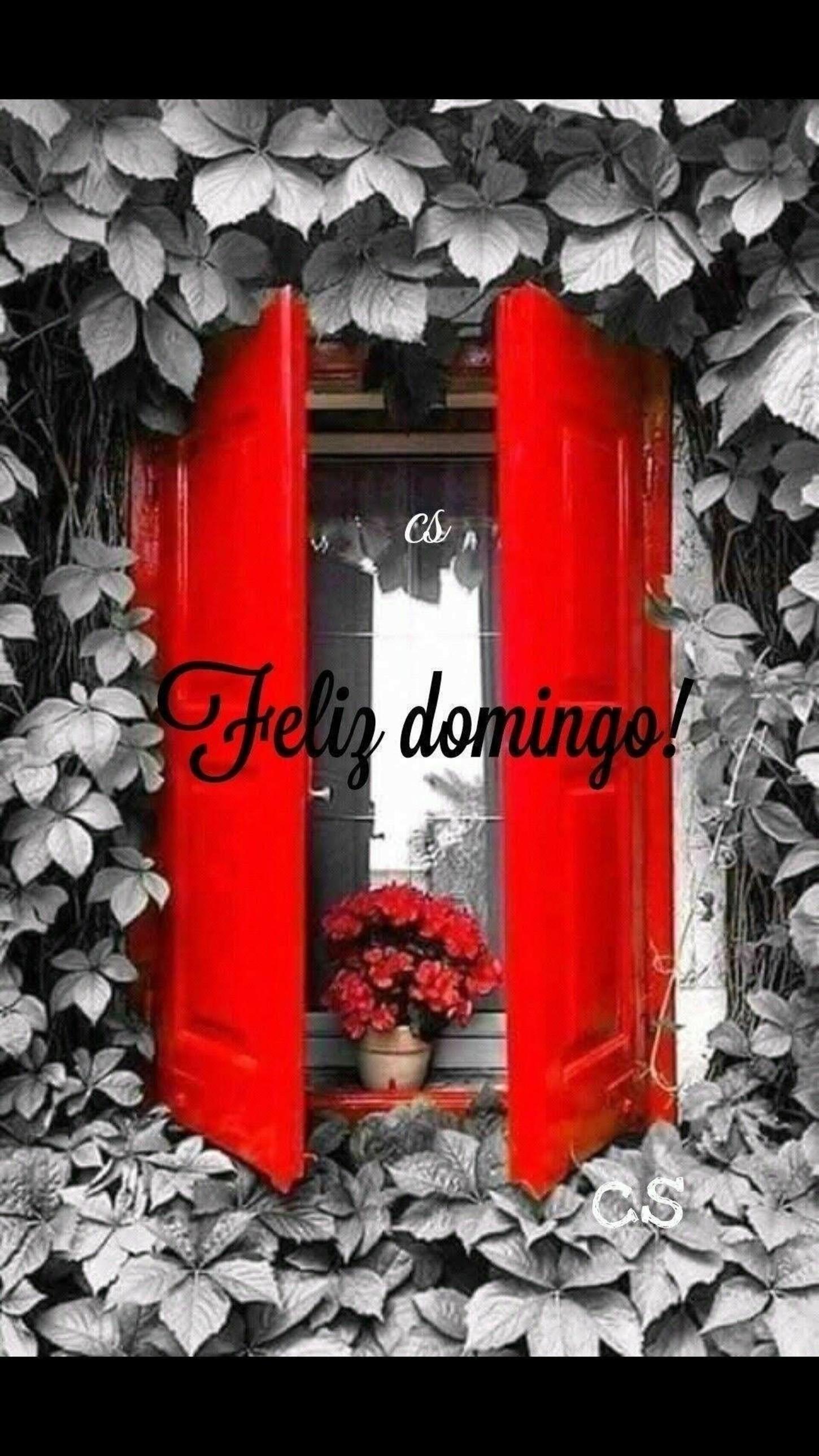 Feliz Domingo Pinterest 318