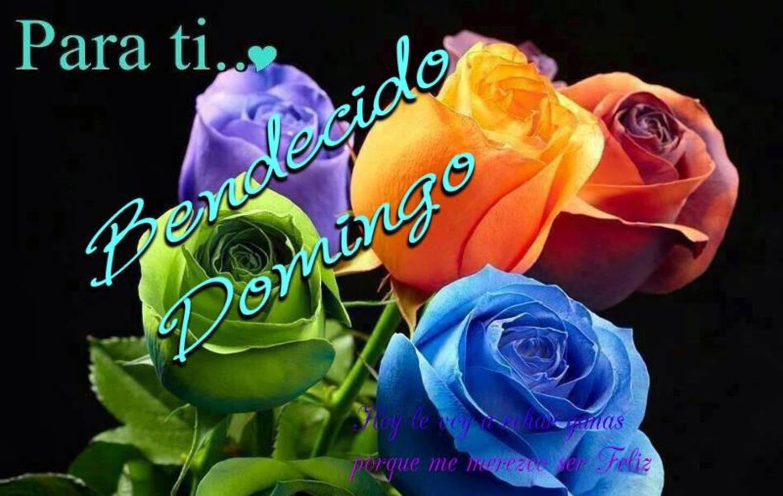 Feliz Domingo Pinterest 324