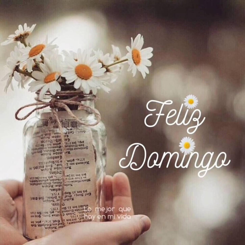 Feliz Domingo Pinterest 328