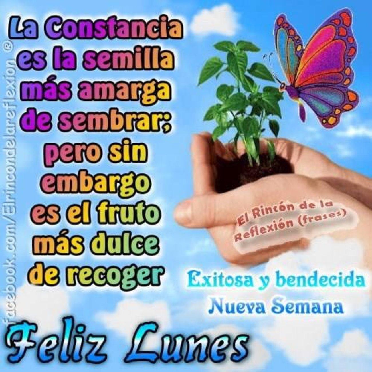 Feliz Lunes Buenos Días Bonitasimagenesnet