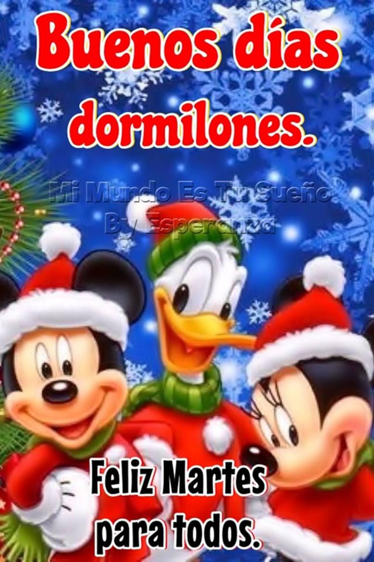 Feliz Martes Navidad 286