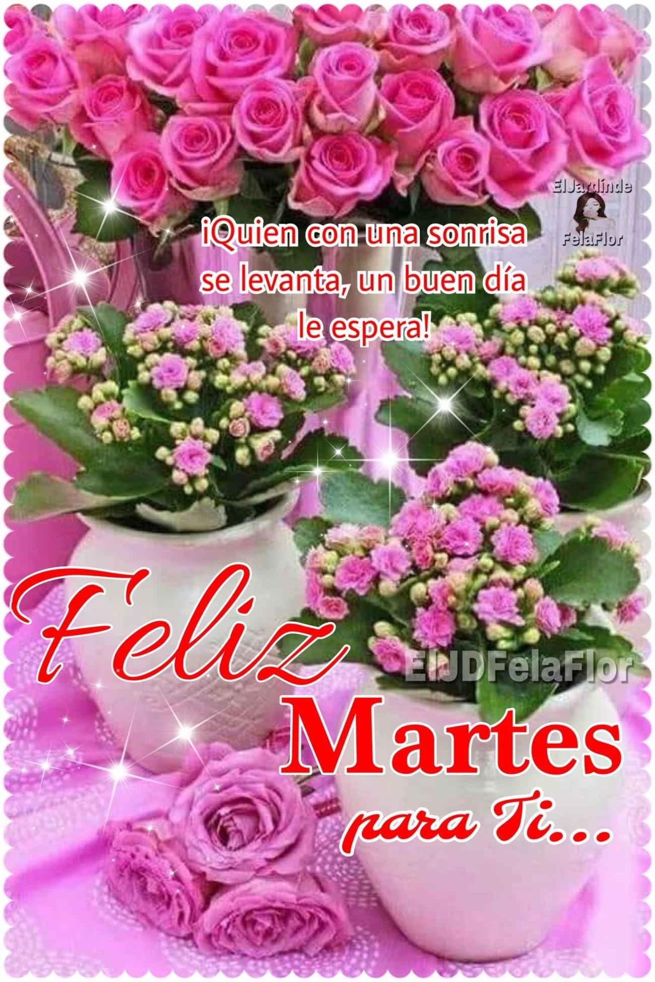 Feliz Martes amigos 211 - BonitasImagenes.net