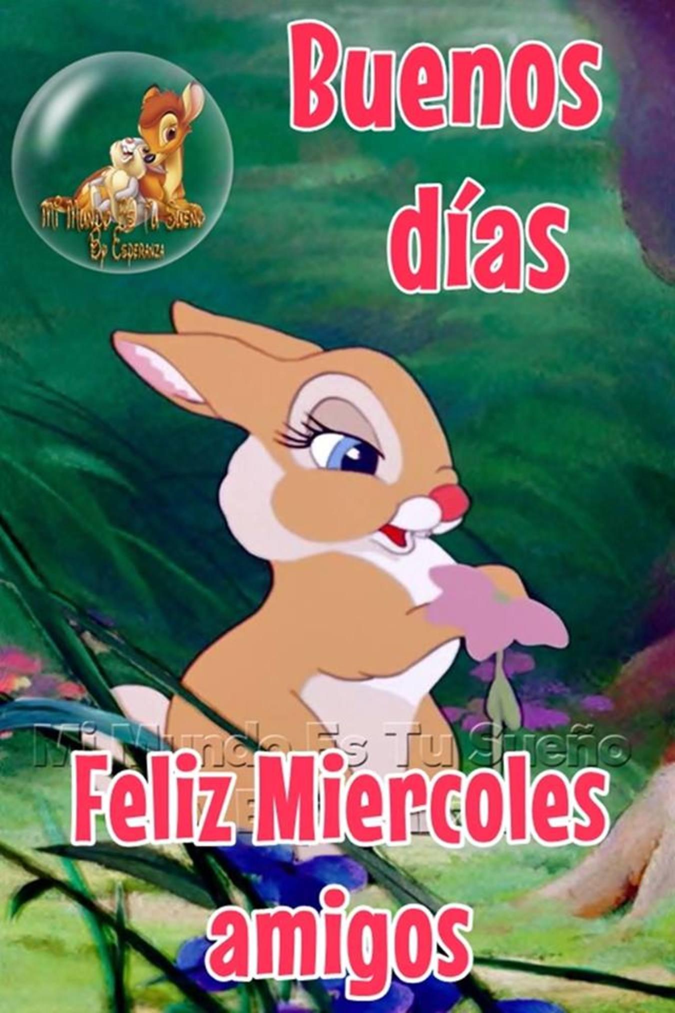 Feliz Miércoles Disney 87