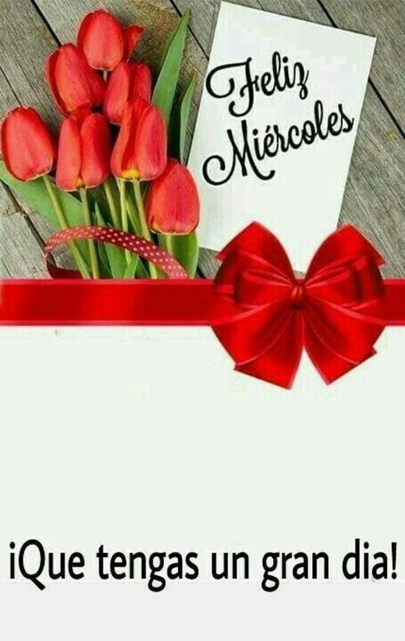 Feliz Miércoles con rosas 97