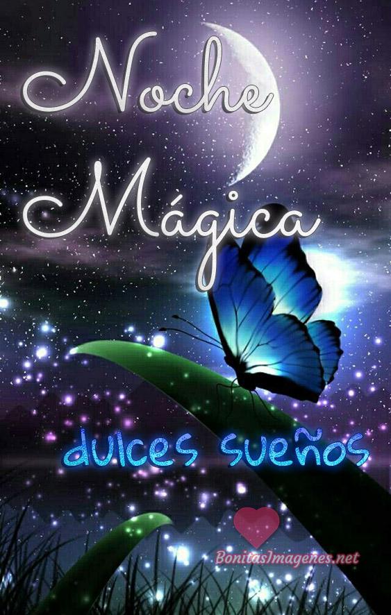 Noche Mágica dulces sueños mensajes WhatsApp