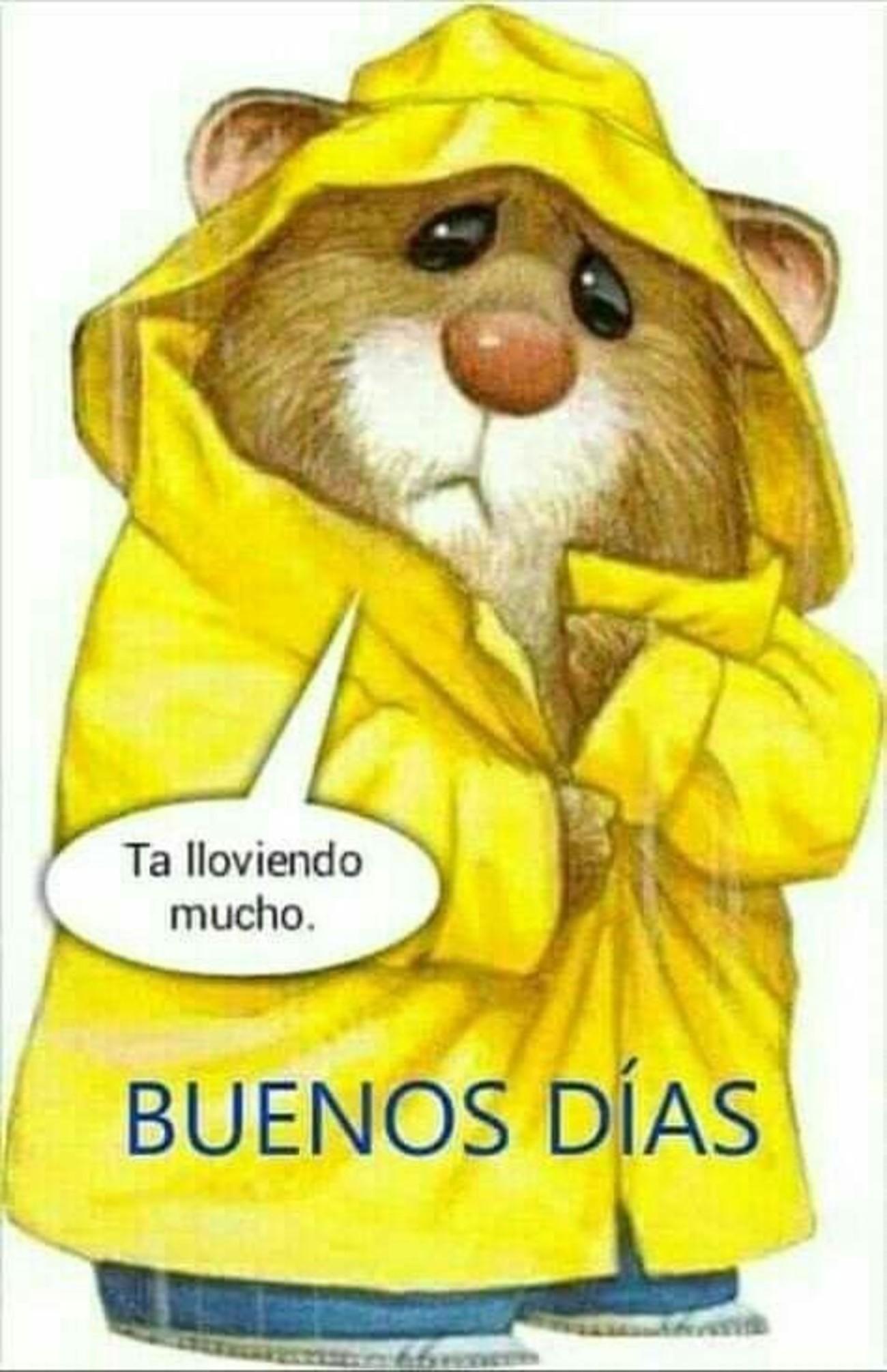 Ta lloviendo mucho Buenos Días 106