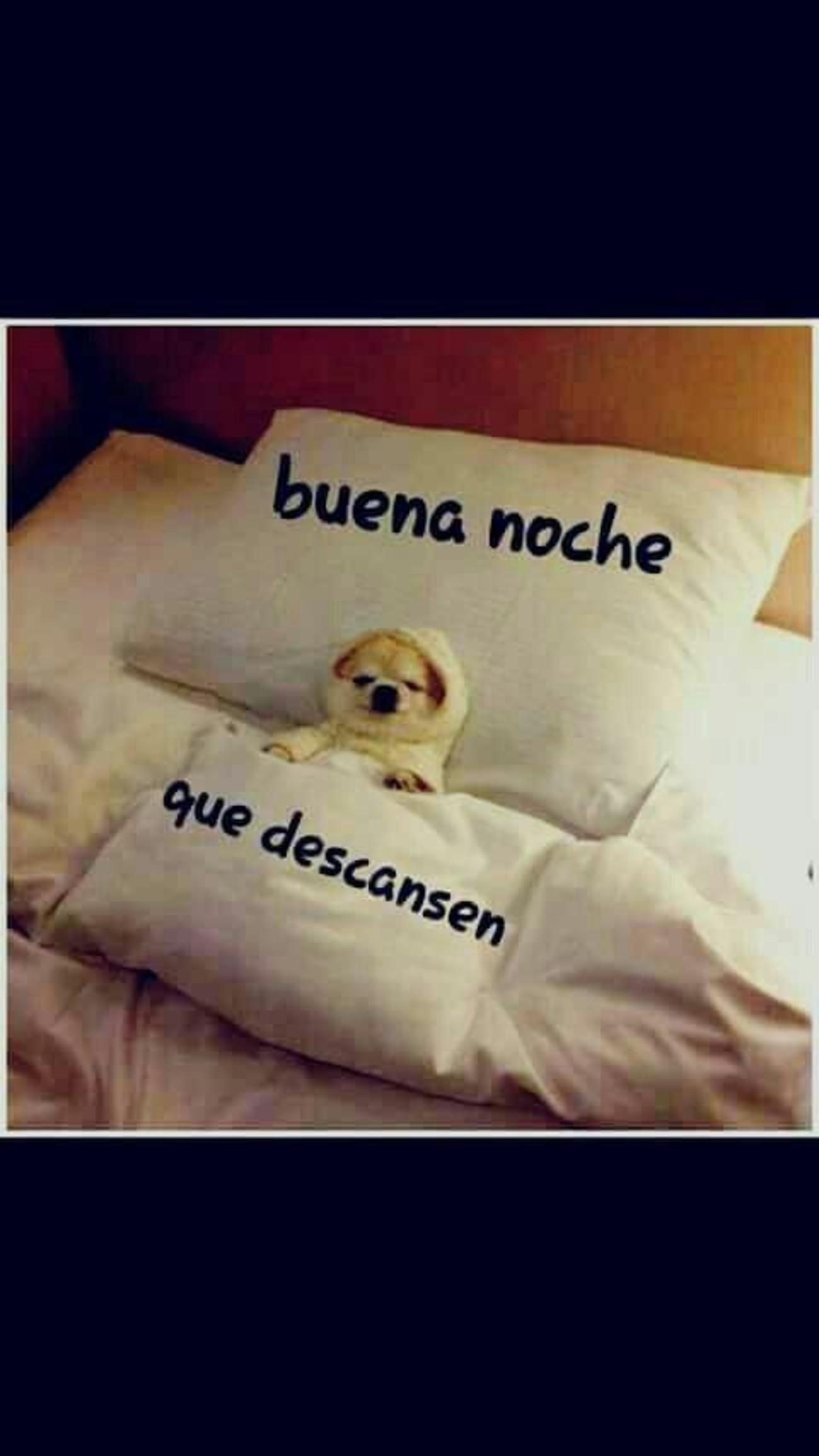 Buena Noche 1019