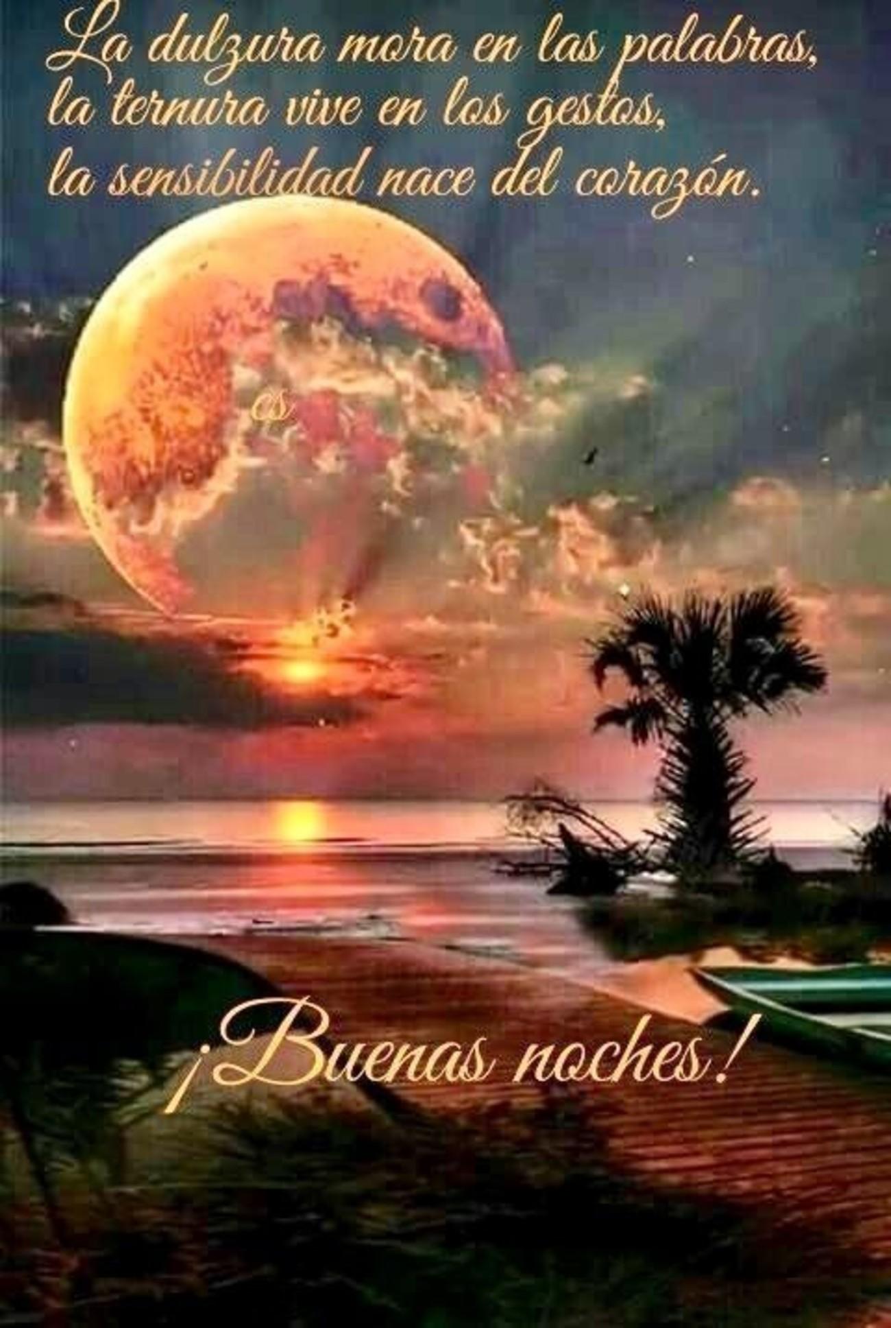 Imagen de buenas noches dulces nuevas