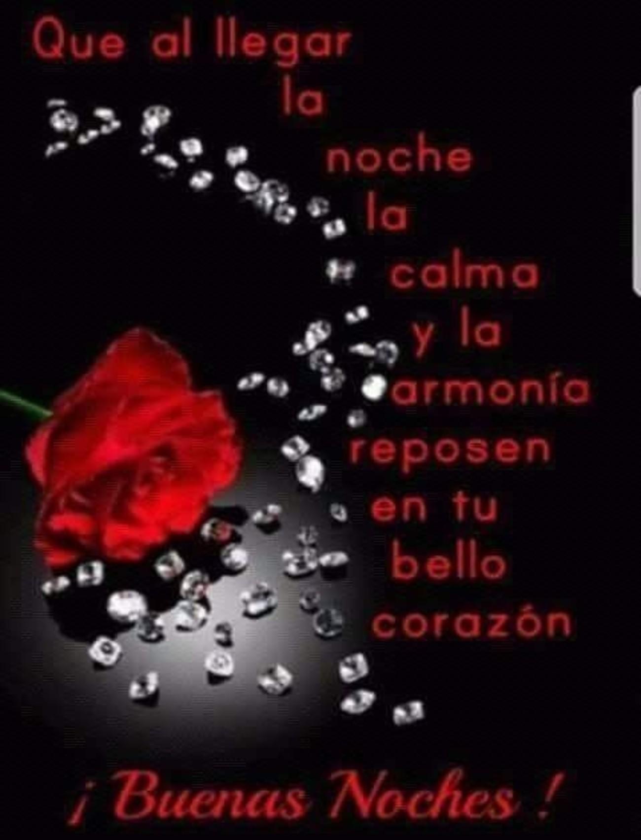 Buenas Noches amigos 846