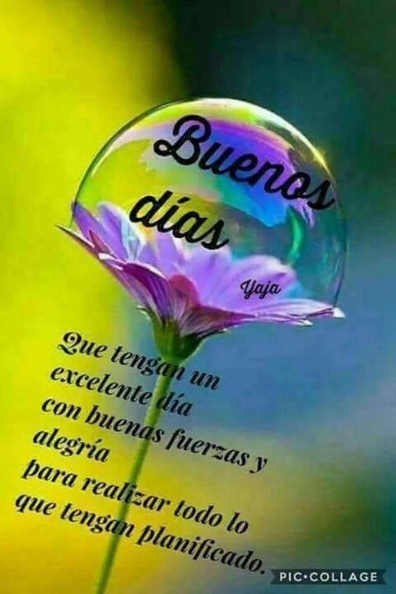 Buenos Días amigos 782