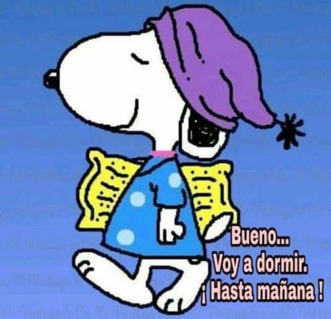 Snoopy Buenas Noches 888